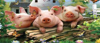 养猪赚钱软件有哪些
