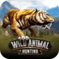 野生動物狩獵2019