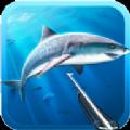 狩猎长矛潜水