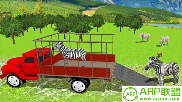 城市动物园动物货物运输