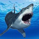 鲨鱼的恐怖袭击
