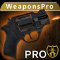 终极武器模拟器Pro破解版