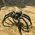 蜘蛛家族模拟器