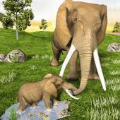 非洲野象野生动物
