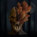森林恐怖症