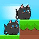 方形猫的冒险