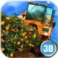 欧洲农场模拟器水果