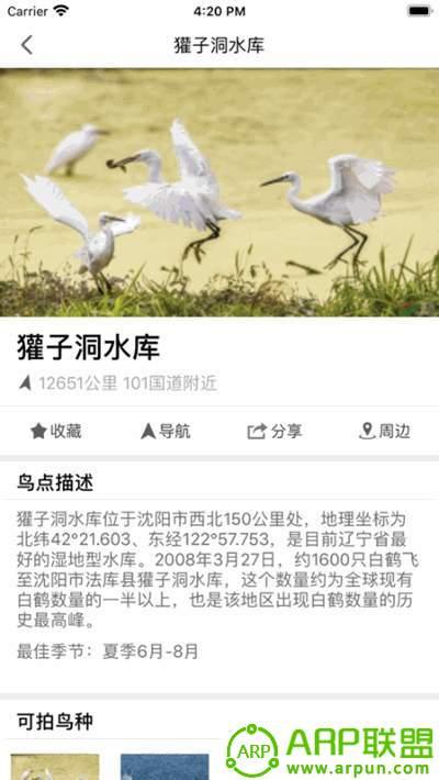 和地图鸟网版
