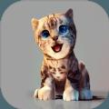 真实小猫3D模拟
