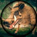 野外猎猪狙击手射击
