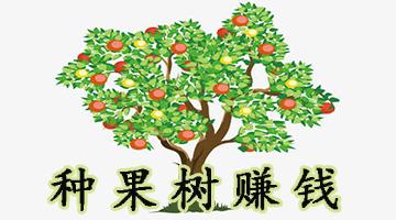 种果树赚钱软件