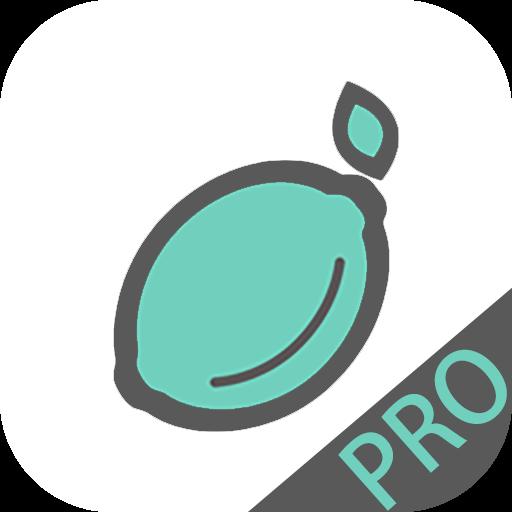 青檸手賬Pro