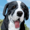 狗模拟器小狗宠物农场