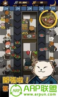 猫咪深夜食堂