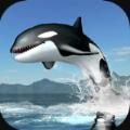 虎鲸生存模拟器