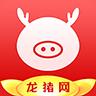 龙猪网官方版