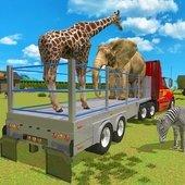 动物车司机