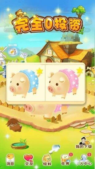 全民养猪赚钱