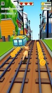 无尽奔跑的猫