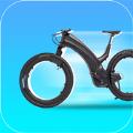 电动自行车大亨
