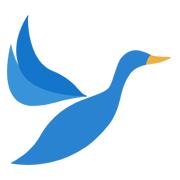 大雁资讯软件