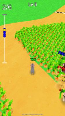 兔子农场奔跑