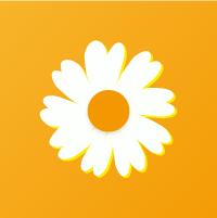雏菊任务平台